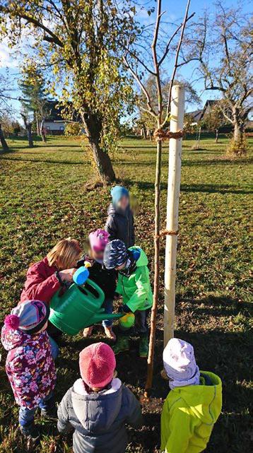 Die Kinder der Kita Posterstein erhielten Obstbäume auf der Obstwiese gegenüber der Kita.