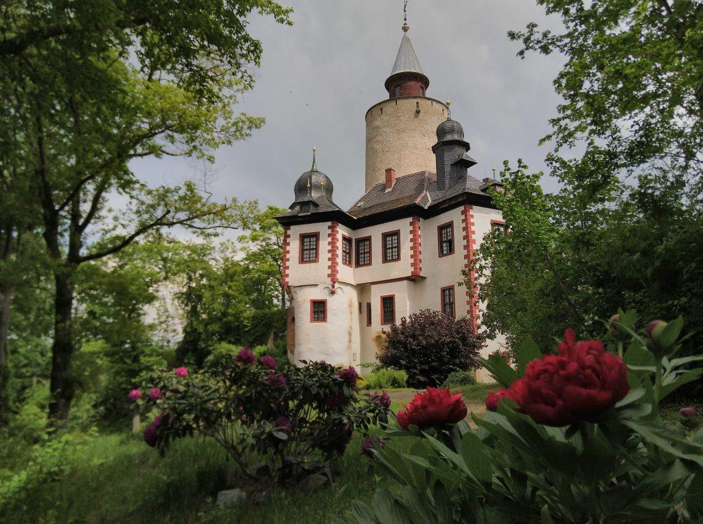 Burg Posterstein mit Pfingstrose (Foto: Museum Burg Posterstein)